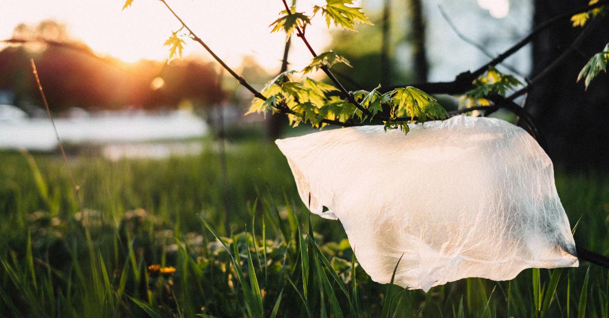 Quanto impatta il risparmio energetico su un impianto per la lavorazione della plastica