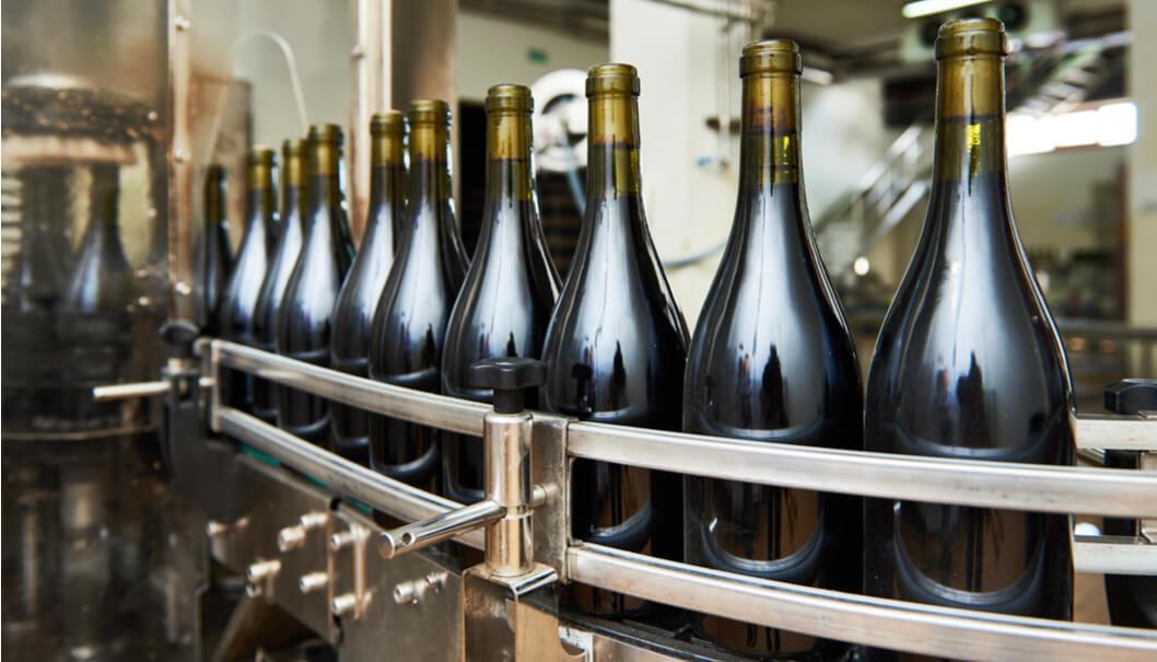 revamping-impianti-vitivinicoli