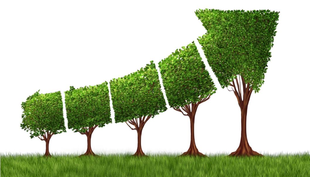 Industria energetica, perché pensare a una imprenditoria sostenibile